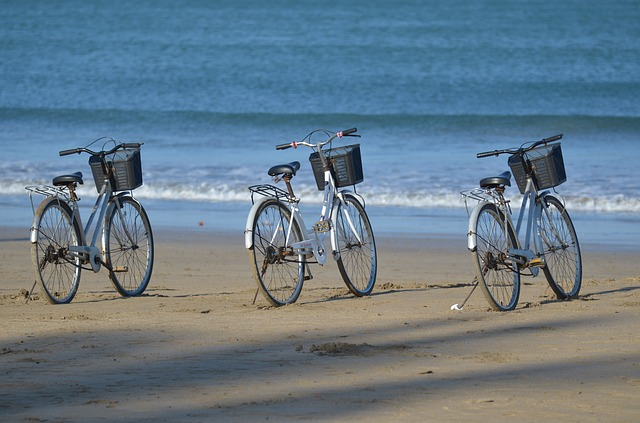 Location de vélo pour parcourir la région