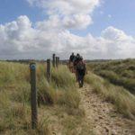 Randonnée dans les dunes sur les chemins ensablés