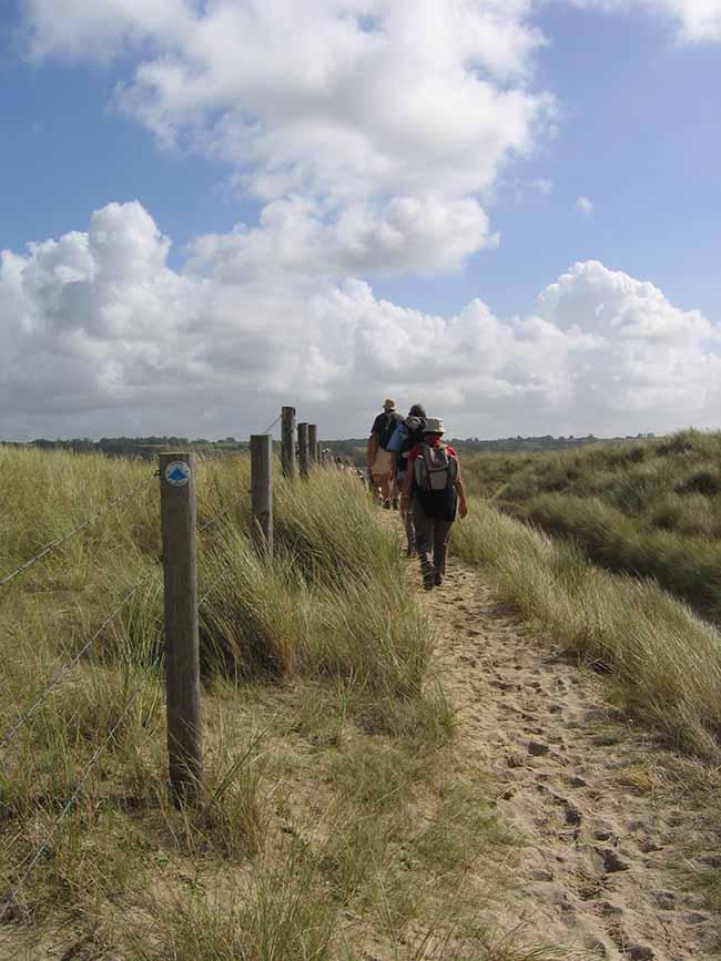 Randonnées dans les dunes sur les chemins ensablés