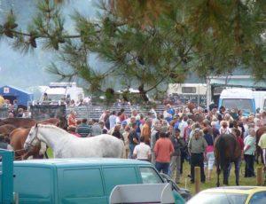 Les nombreux visiteurs à la foire sainte croix à Lessay