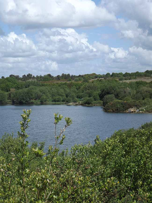 Le lac des bruyères dans la lande de Millières