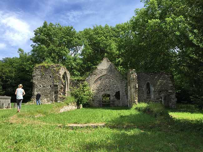 Vestiges du château du à l'étang Mont Castre