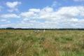 Doville-Reserve-naturelle-de-la-Sangsuriere-1
