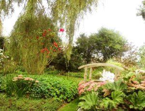 Jardin-La-Bosquerie-S.Georges-8-09-2014-recoloree–13-