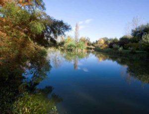 Jardin-Le-Haut-Dy—Cre-ances-1