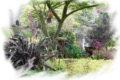 auxais-jardin-de-la-bosquerie-1