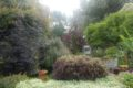 auxais-jardin-la-bosquerie-2-2