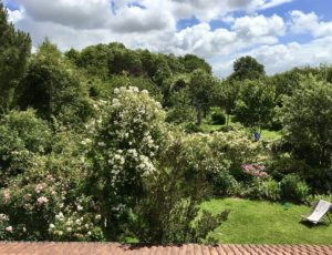 jardin-7-chenes-lessay–1-