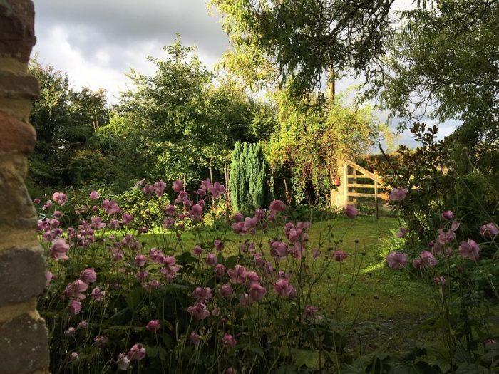 jardin-7-chenes-lessay–11-
