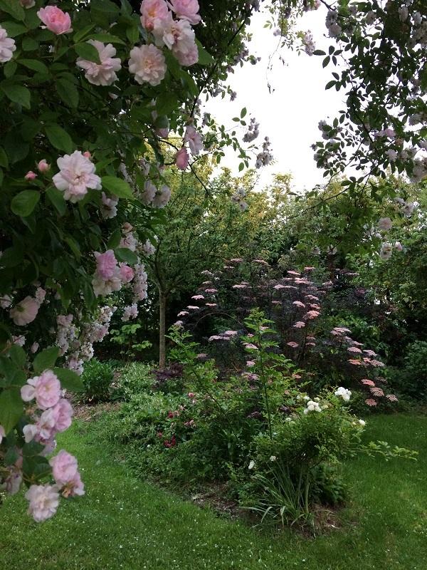 jardin-7-chenes-lessay–13-