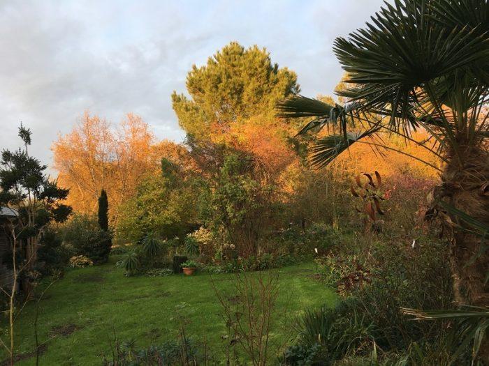 jardin-7-chenes-lessay–14-