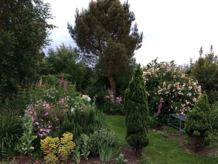 jardin-7-chenes-lessay–7-