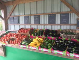 legumes-bio-lebreuilly