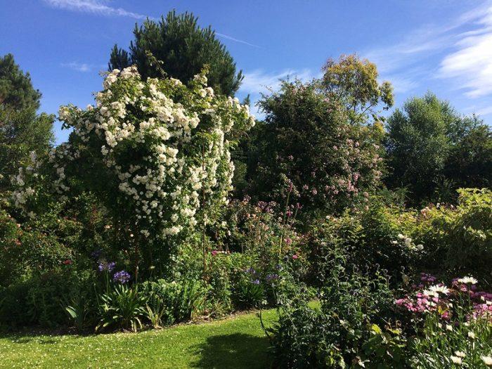 lessay-jardin-les-sept-chenes-4-Caron