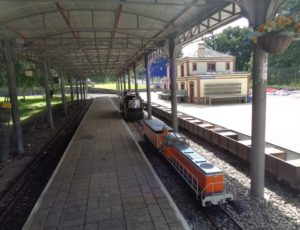 saint-martin-d-aubigny-mini-train-des-marais–1-