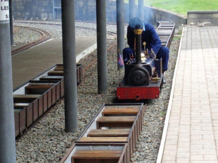 saint-martin-d-aubigny-mini-train-des-marais–4-