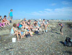 sortie-coquillages-Cotentin