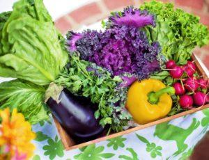 vegetables-790022-1280